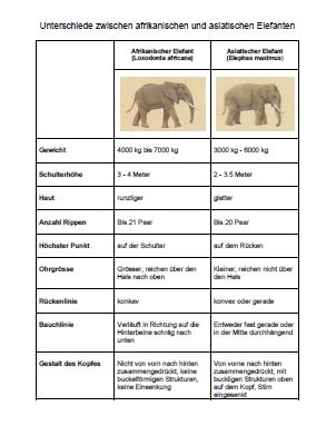 Differences between African and Asian Elephant