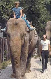 Sandry in the Knies children's zoo Rapperswil with elephant keeper Georges Frei
